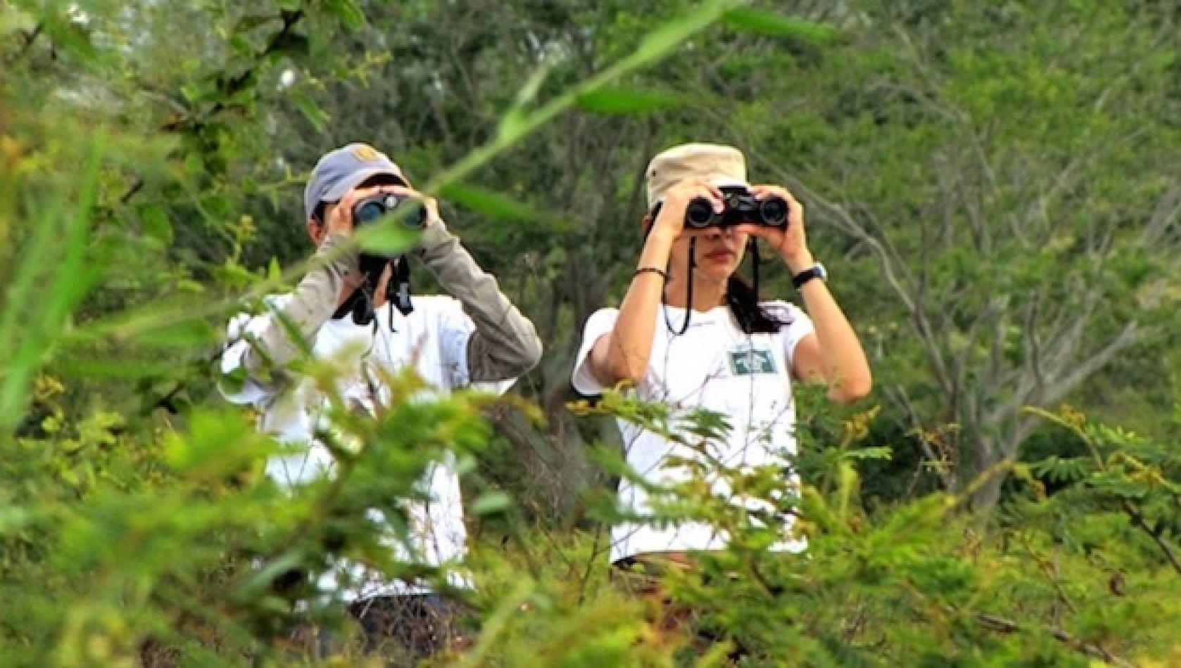 El avistaje de aves en el cerro San Bernardo se potenciará con el proyecto Ala Delta