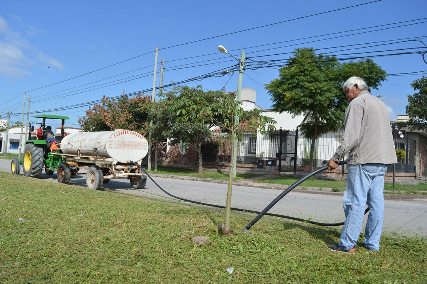 Importante operativo de riego de nuevos árboles