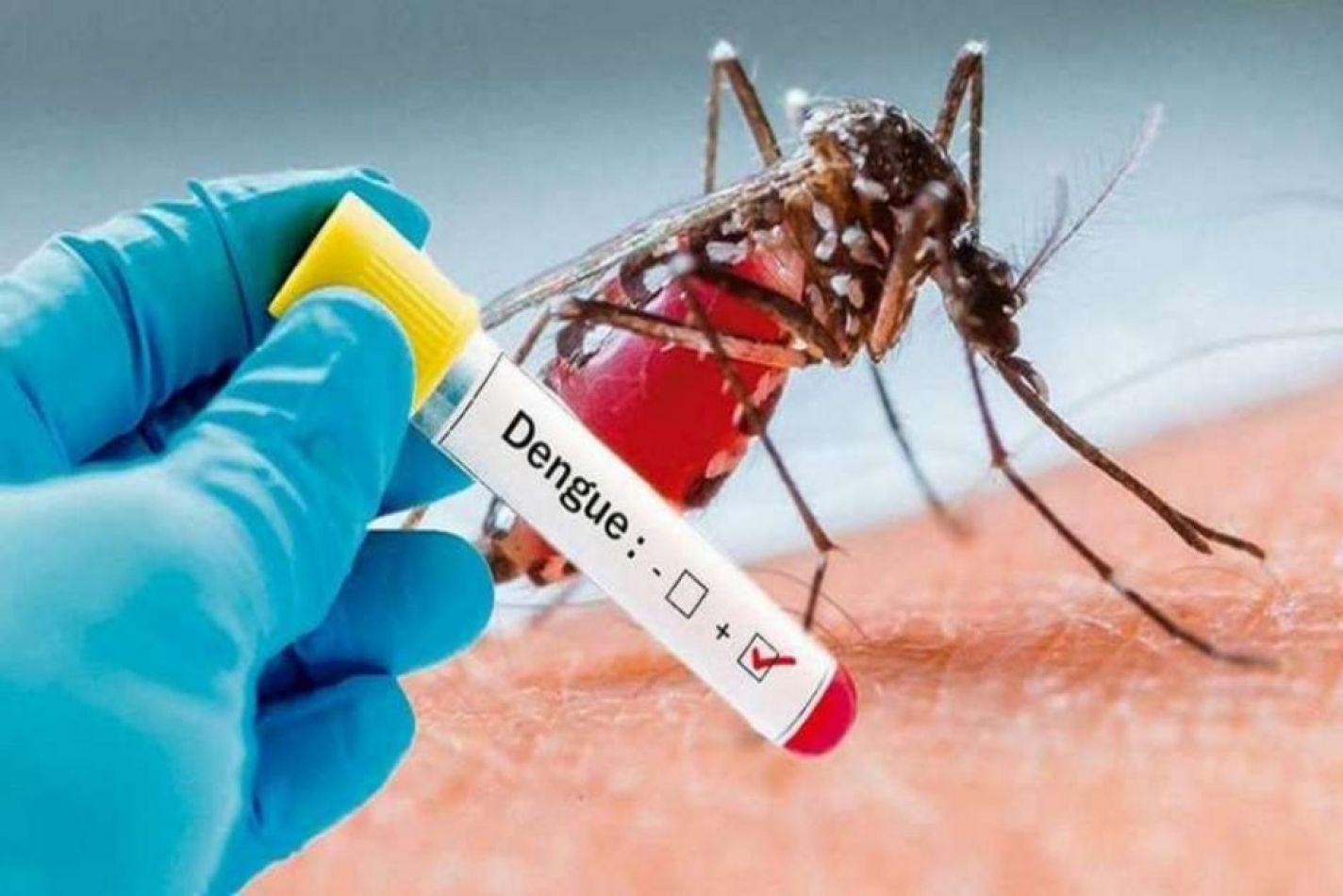 La cantidad de casos de dengue es inferior a la del año pasado