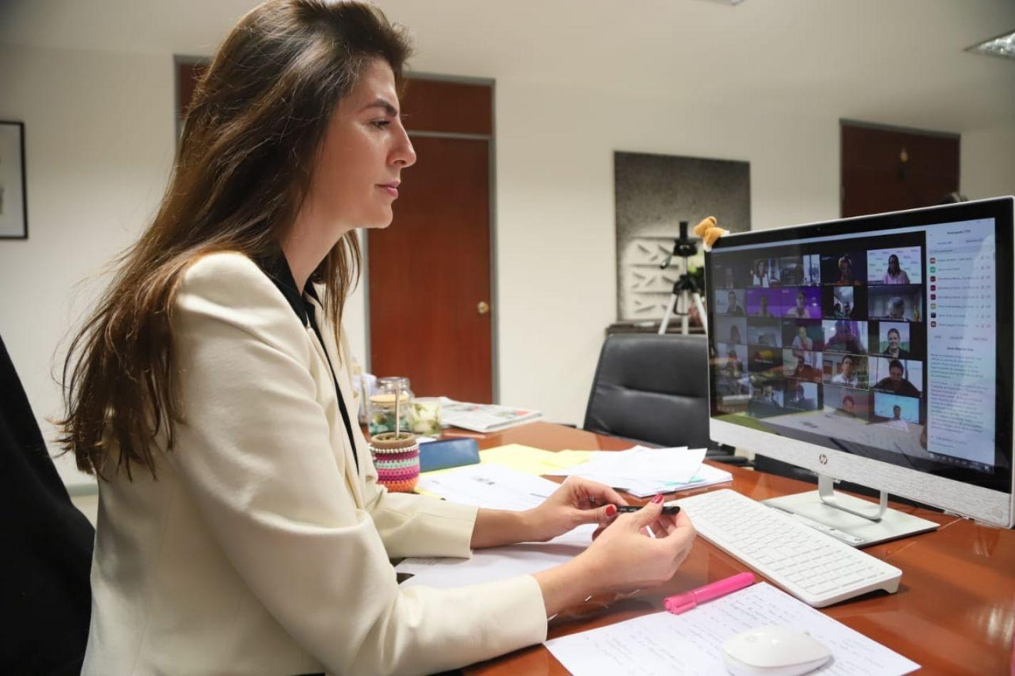 Bettina Romero expuso ante la Universidad de Harvard, el plan de la Ciudad para afrontar el Covid-19
