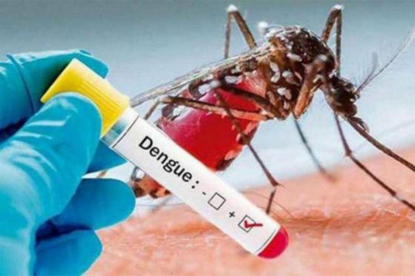 Se informaron dos casos probables de dengue en la provincia