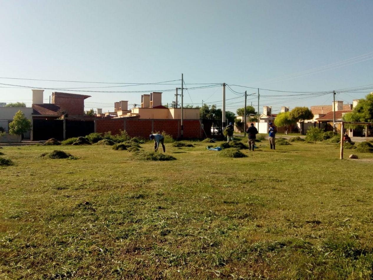 En los barrios San Carlos, Los Ceibos y Miguel Aráoz realizaron tareas de desmalezado