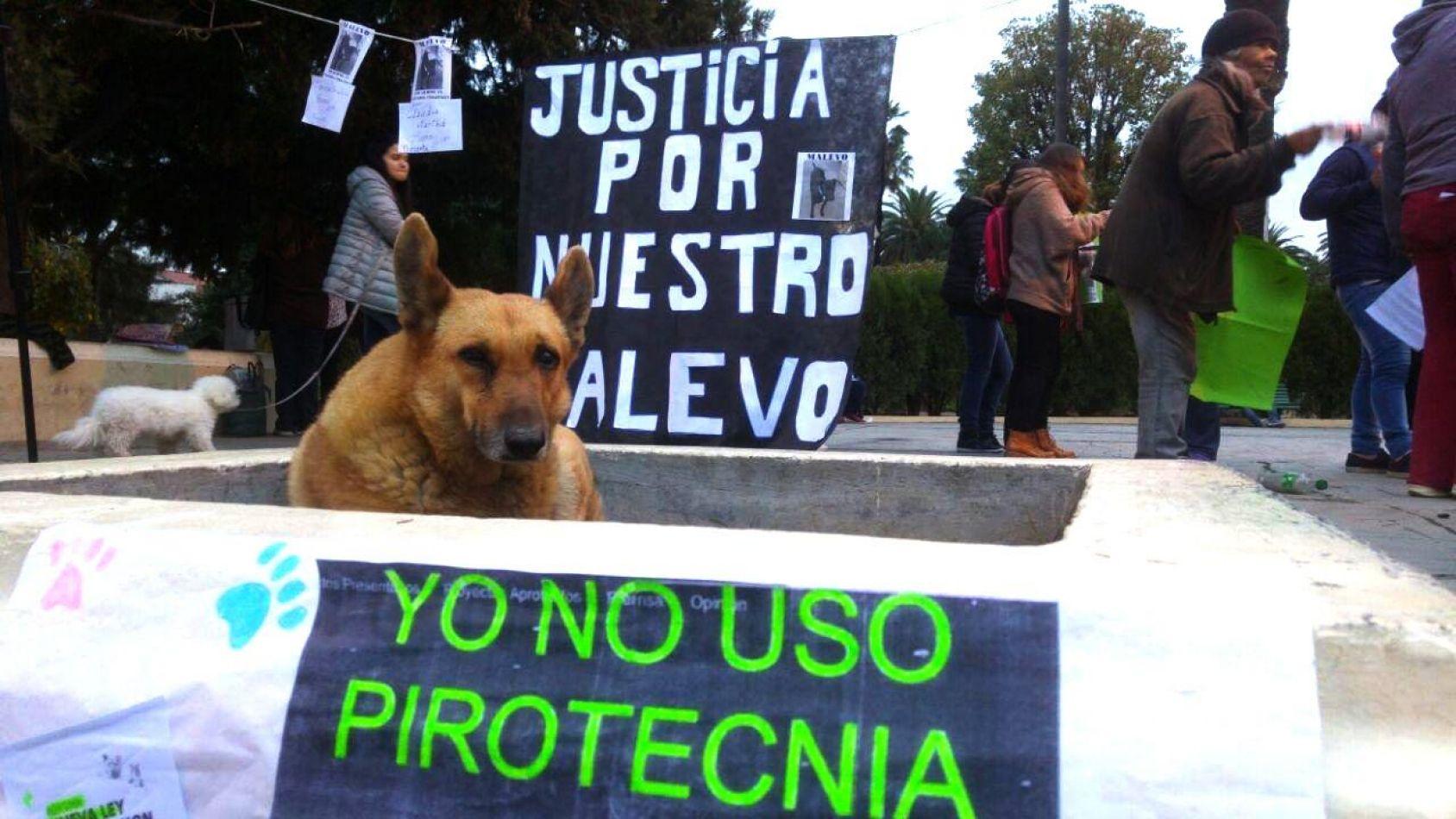 La prohibición de pirotecnia en Salta disparó fuertes críticas, además de elogios